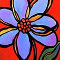 Petals by Mike Daneshi