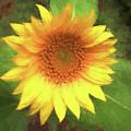 Petals Of Bright Sunshine  by Ola Allen