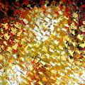 Petals by Preethi Mathi