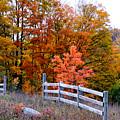 Petoskey Autumn Fence by John McArthur