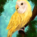 Petrie The Lovebird by Becky Herrera