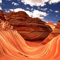 Petrified Dunes Landscape by Adam Jewell