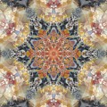 Petrified Snowflake by M E Cieplinski
