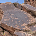 Petroglyphs by Jim Thompson