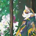 Petunia by Caroline Davis