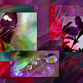 Petunia Collage by Irma BACKELANT GALLERIES