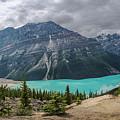 Peyto Lake Banff by Joan Carroll