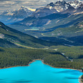 Peyto Outflow by Adam Jewell