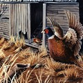 Pheasant Open House by Sharon Molinaro