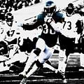 Philadelphia Eagles 5b by Brian Reaves