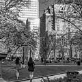 Philadelphia Street Photography - 0902 by David Sutton