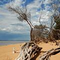 Phillip Island Beach by Robert Lacy
