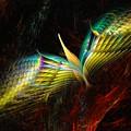 Phoenix by David Lane