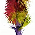 Phoenix Is Rising Series 1799.022414 by Kris Haas