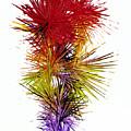 Phoenix Is Rising Series 1800.022414 by Kris Haas