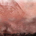 Phoenix Rising by Christopher Gaston