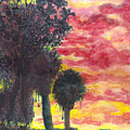 Phoenix Sunset by Eric Samuelson