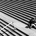 Photographer In Paris by Jean-Philippe Jouve