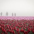 Photographers In The Mist by Eric Ewing