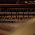 Piano Guts by Samantha Fuller