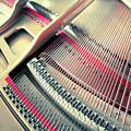 Piano Inside by Ariadna De Raadt