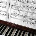 Piano Keys by Carlos Caetano