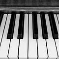 Piano Keys by Shelly Dixon