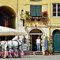 Piazza Anfiteatro by Keith Armstrong