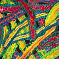 Picasso Paintbrush Croton by Daniel Jean-Baptiste