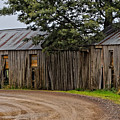 Pickers Huts by Renee Miller