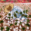 Picking Cotton by Barbel Amos