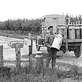 Picking Up Milk Cans by Underwood Archives