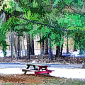 Picnic Area With Wooden Tables 3 by Jeelan Clark