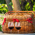 Picnic In Vineyard by Teri Virbickis