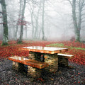Picnic Of Fog by Mikel Martinez de Osaba
