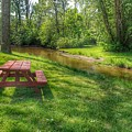 2401 - Picnic Table By The River In Lapeer by Sheryl Sutter