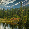 Picture Lake Vista by Mike Reid
