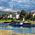 Picturesque River Cruise by Anthony Dezenzio