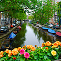 Picturesque View Amsterdam Holland Canal Flowers by Just Eclectic