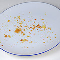 Pie Crumbs In An Empty Plate by Sami Sarkis