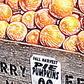Pie Pumpkins For Sale by Wayne Potrafka