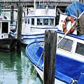 Pier 39 by Denny Bond
