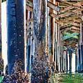 Pier Pylons Balboa by Chris Brannen