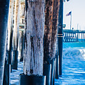 Pier Ventura Ca by Kevin Eckert Smith