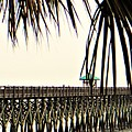Pier Walk by Jacqueline Whitcomb