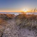 Pierport Beach Dunes by Twenty Two North Photography