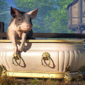 Pig In A Bathtub by Daniel Eskridge