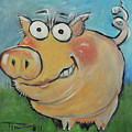pig by Tim Nyberg
