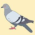 Pigeon Yellow by Nicole Wilson