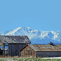 Pikes Peak And Old Barn Spring Snow by Dawn Key